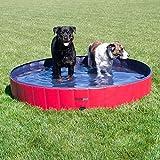 FrontPet Foldable Extra Large Dog Pet Pool Bathing Tub, 60 Inch X 12 Inch