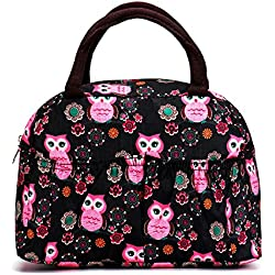 Reusable Fashion Lunch Bag for Women Cute Zipper Lunch Tote Bag Light Picnic Lunch Container , Owl