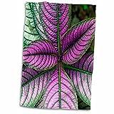 "3D Rose Persian Shield Plant-Strobilanthes Dyerianus-Costa Rica Hand Towel, 15"" x 22"", Multicolor"