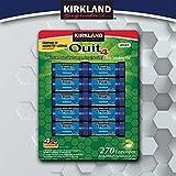Kirkland Signature Quit4 4mg Lozenge Mint 270 Count