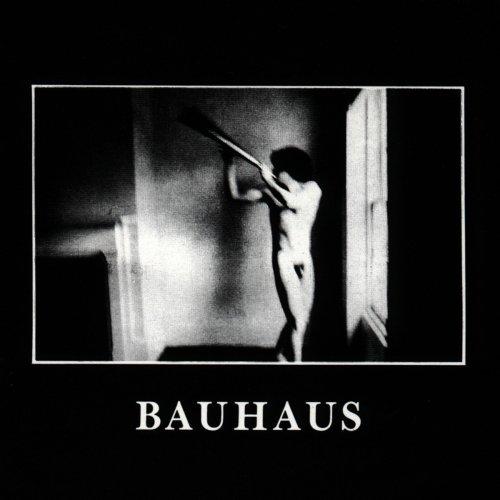 In the Flat Field: Bauhaus: Amazon.fr: Musique
