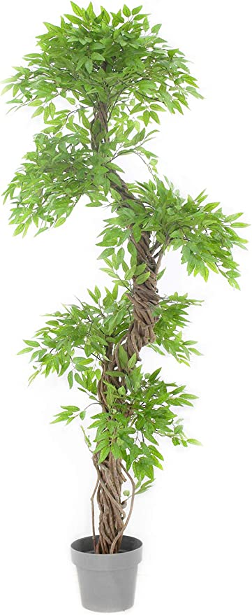 Amazon Com Vert Lifestyle Beautiful Artificial Plants And Trees Large Contemporary Japanese Fruticosa Tree Handmade Using Real Bark Synthetic Leaves Indoor Plant 165cm Tall Home Kitchen