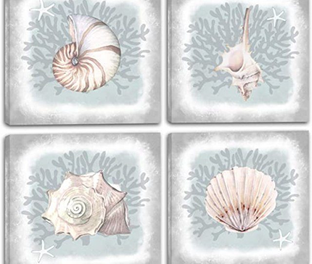 Amazon Com Paimuni Seashell Wall Decor  Pieces Modern Ocean