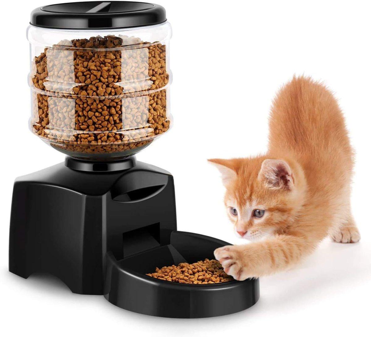 Comedero Automático Gatos y Perros 5.5L, Alimentador de Mascotas con Pantalla LCD, Dispensador con Función de Grabación