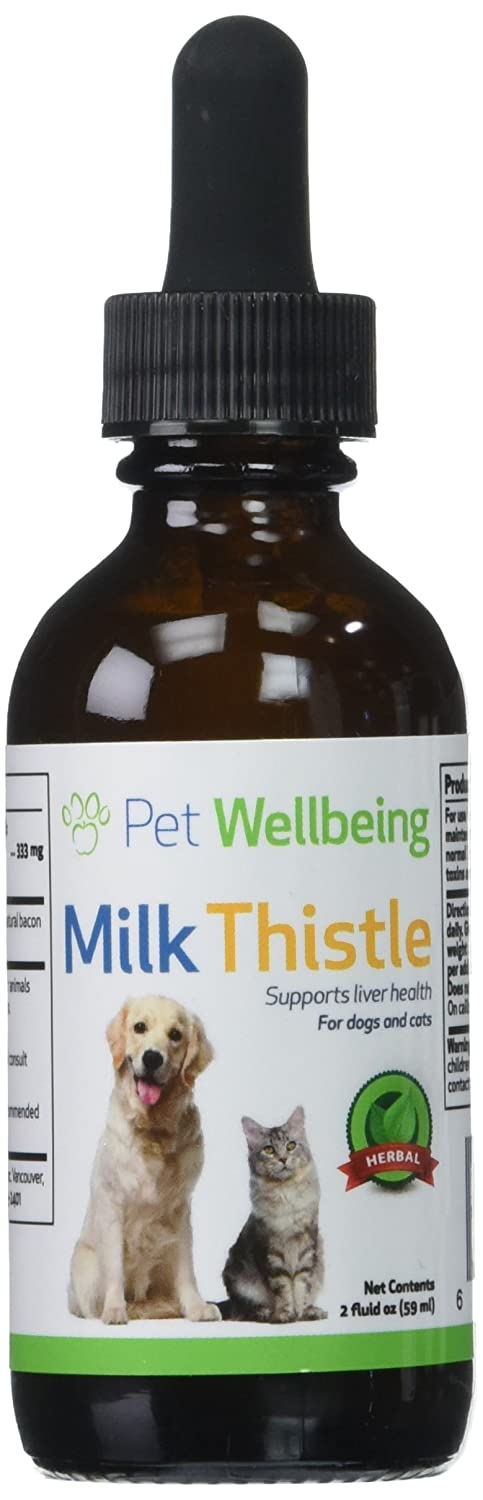 Where To Buy Milk Thistle For Dogs - Paws Right Here