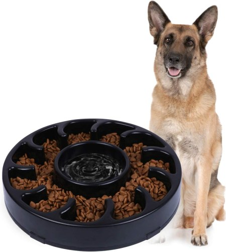 71KydSn569L. AC SL1500 Best Slow Feed Dog Bowl Reviews and Buying Guide