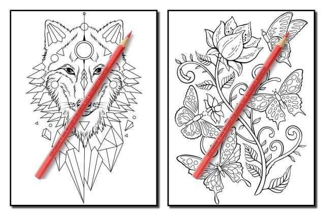 Tattoo Coloring Book: An Adult Coloring Book with Awesome, Sexy
