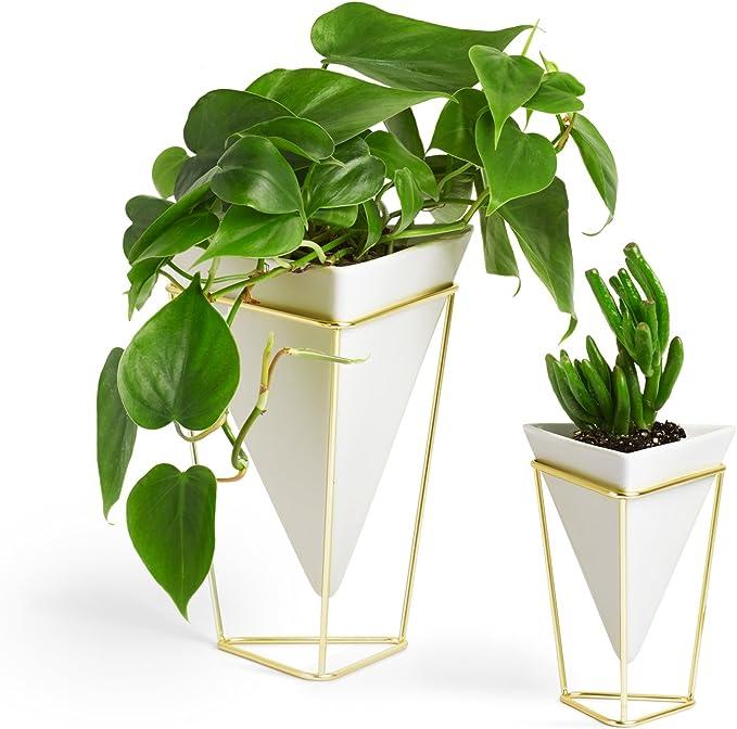 Umbra Trigg Desktop Planter Vase & Geometric Container-for Succulent, Air, Mini Cactus, Faux Plants and More, Desk, White/Brass