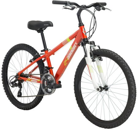 Diamondback Octane 24 Kids Bike