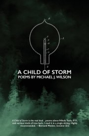Image result for Michael J. Wilson A Child of Storm