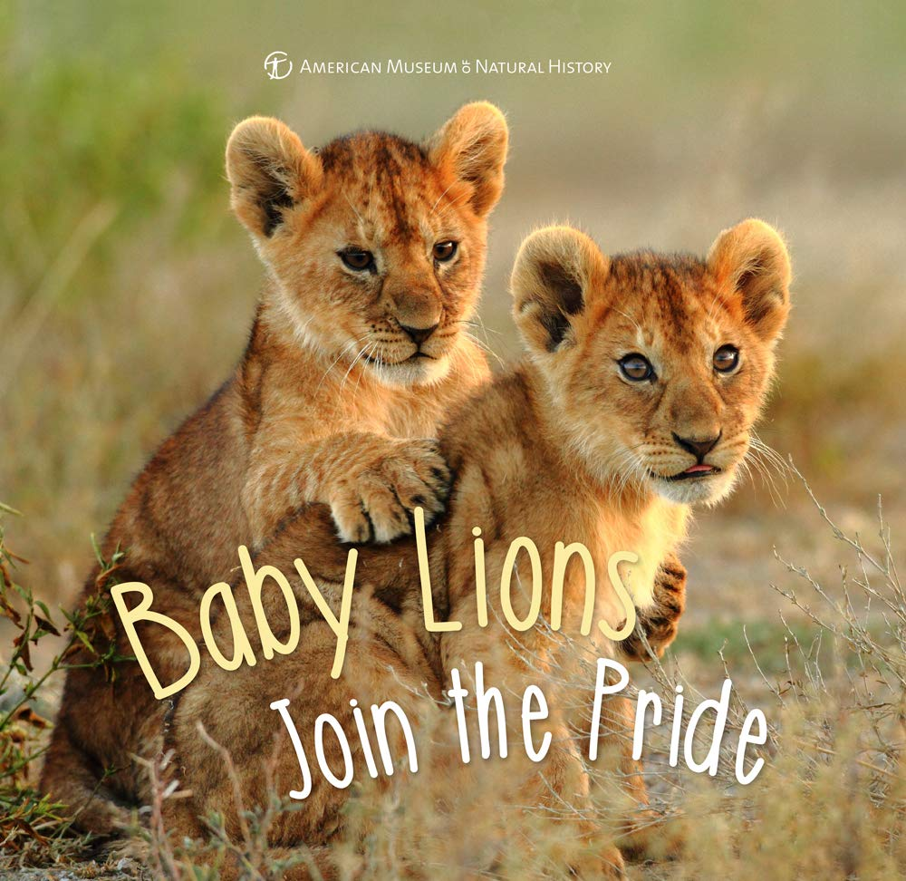 Baby Lions Join The Pride First Discoveries American Museum Of Natural History 9781454933441 Amazon Com Books