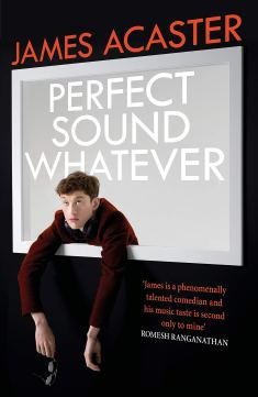 Image result for perfect sound whatever