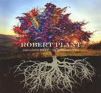 Digging Deep: Subterranea 2cd Digisleeve Édition Limitée: Robert Plant, Robert  Plant: Amazon.fr: Musique