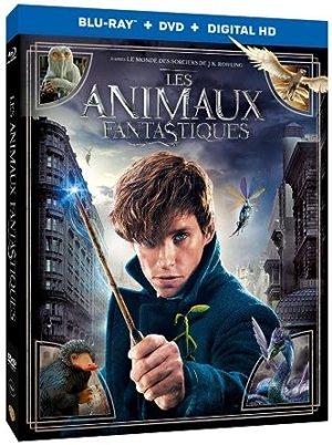 """Résultat de recherche d'images pour """"les animaux fantastiques dvd"""""""