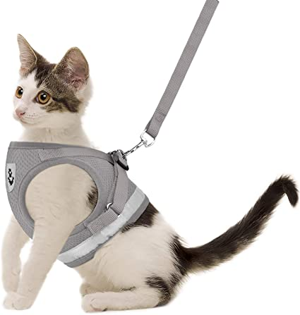 Harness for Cats