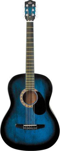 Rogue starter guitar
