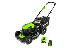 Save on GreenWorks mower