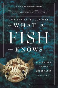 What a Fish Knows: The Inner Lives of Our Underwater Cousins ...