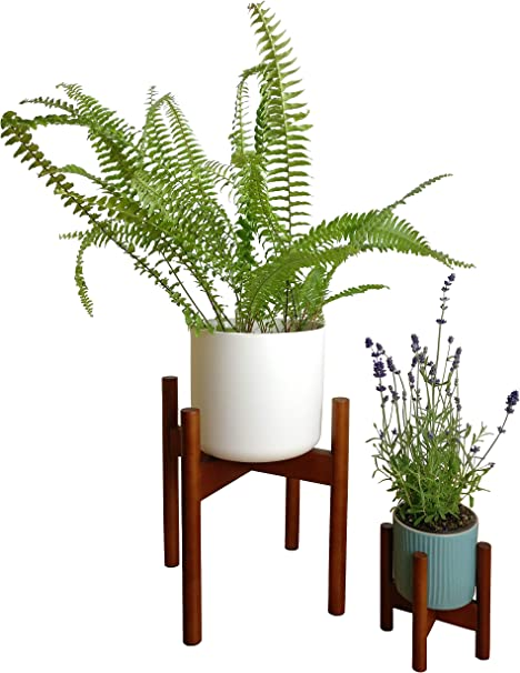 Plant Stand Set Medium Mini Indoor Plant Stands 30 10cm Reversible Plant Pots Stand Red Cherry Amazon Co Uk Garden Outdoors