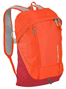 Day pack has its own shoulder straps and anti-theft features
