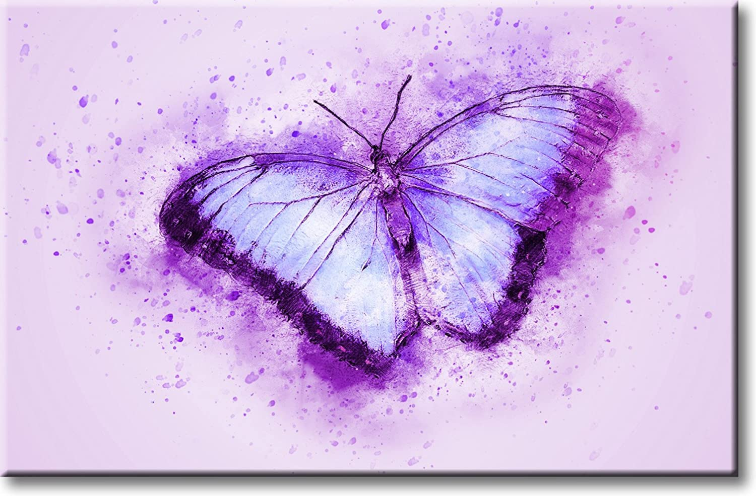 Amazon Com Beautiful Purple Butterfly Picture On Stretched Canvas Wall Art Decor Ready To Hang Posters Prints
