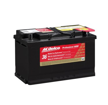 ACDelco 94RAGM Professional AGM Automotive battery