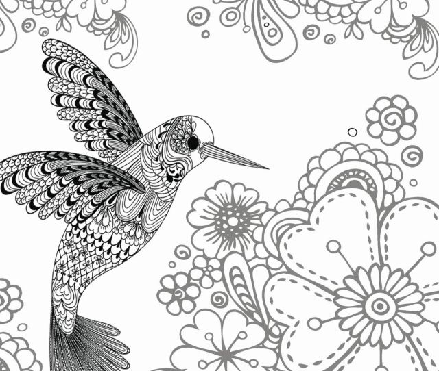 Amazon Com Birds Coloring Book For Adults The Stress Relieving