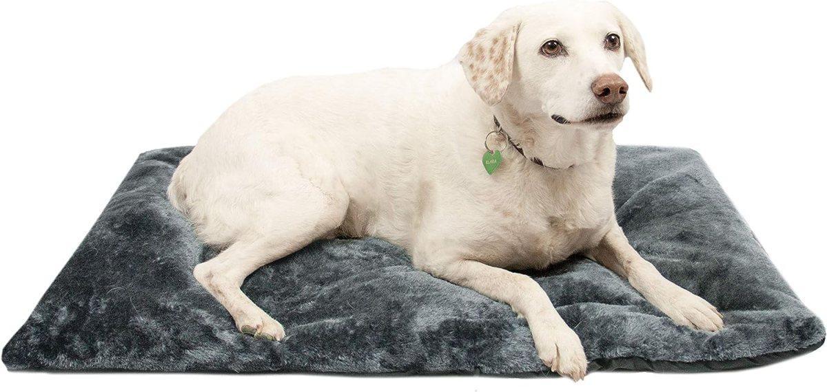 Colchón de Viaje para Perros, Impermeable y Plegable