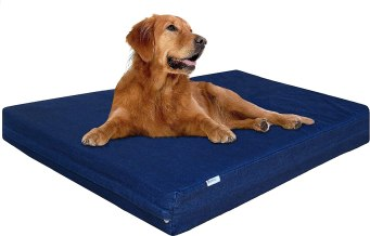 81K7TTlhTjL. AC SL1500 Best Chew Proof Dog Bed For Your Chewing Friend