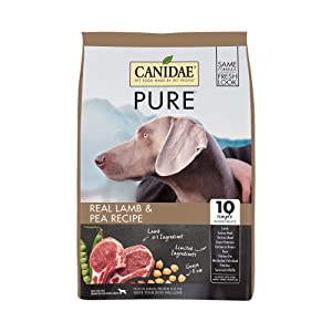 Best Hunting Dog Food