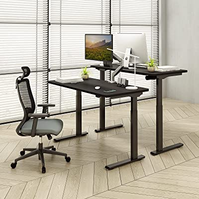 Buy Flexispot Quick Install Standing Desk EC9 Electric Height Adjustable  Desk Computer Laptop 48 x 24 Inches Sit Stand Desk Whole Piece Desk Board  VICI(Black Frame + 48 Black Top) Online in UAE. B08HYQ91X1