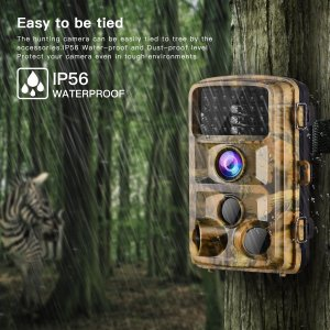 Campark Trail Game Camera 14MP Review