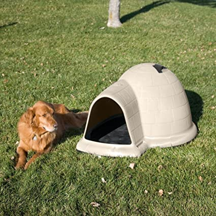 Igloo Dog House Replacement Doors The Best Dog 2018