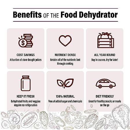 best-dehydrator-for-jerky