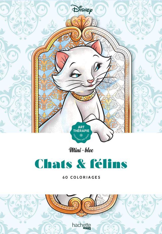 Les mini-blocs Disney Chats et Félins : Disney: Amazon.fr: Livres