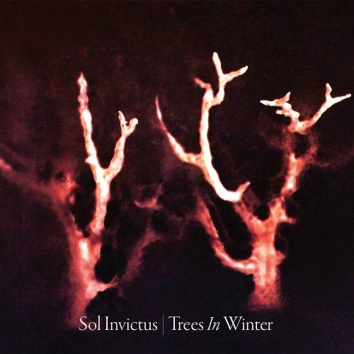 Trees in Winter : Sol Invictus: Amazon.fr: Musique