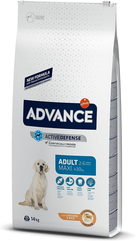 Advance Pienso para Perro Maxi Adulto con Pollo - 14000 grhttps://amzn.to/3d3TYZb