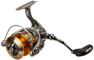 Best Spinning Reels Under 100