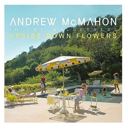 Upside Down Flowers [LP]