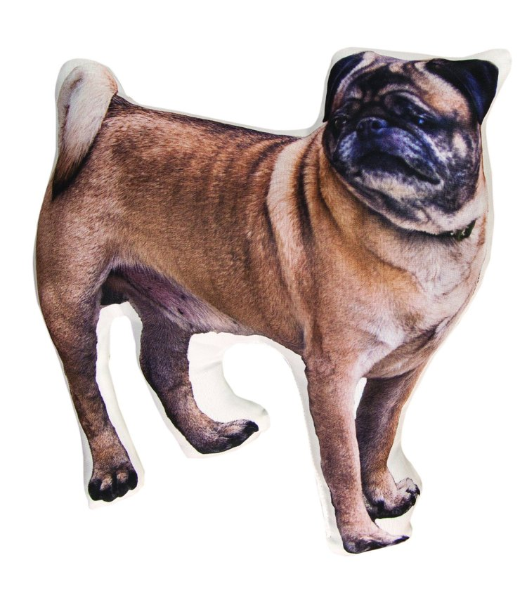 Pug Decorative Pillow