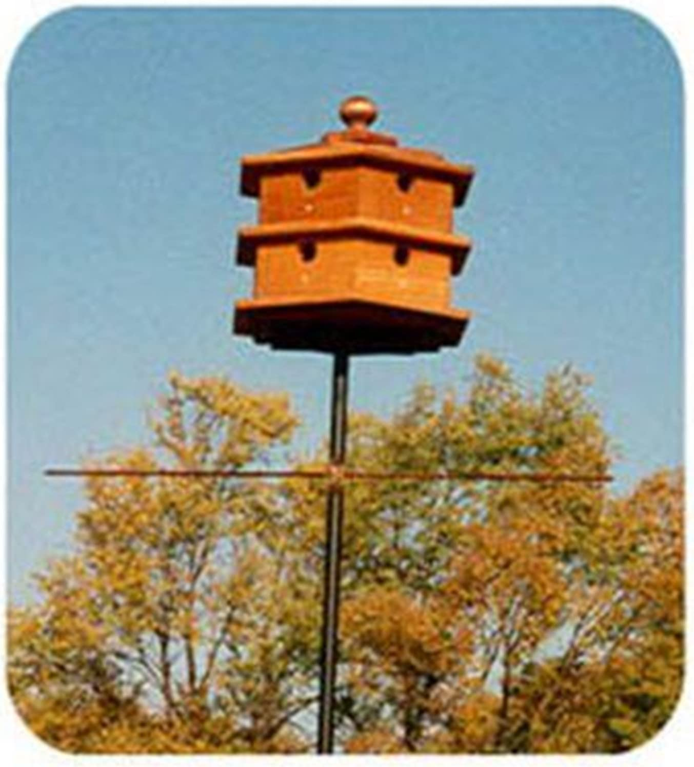 Woodworking Project Paper Plan To Build Hexagon Purple Martin House Bird Feeder And Bird House Woodworking Project Plans Amazon Com