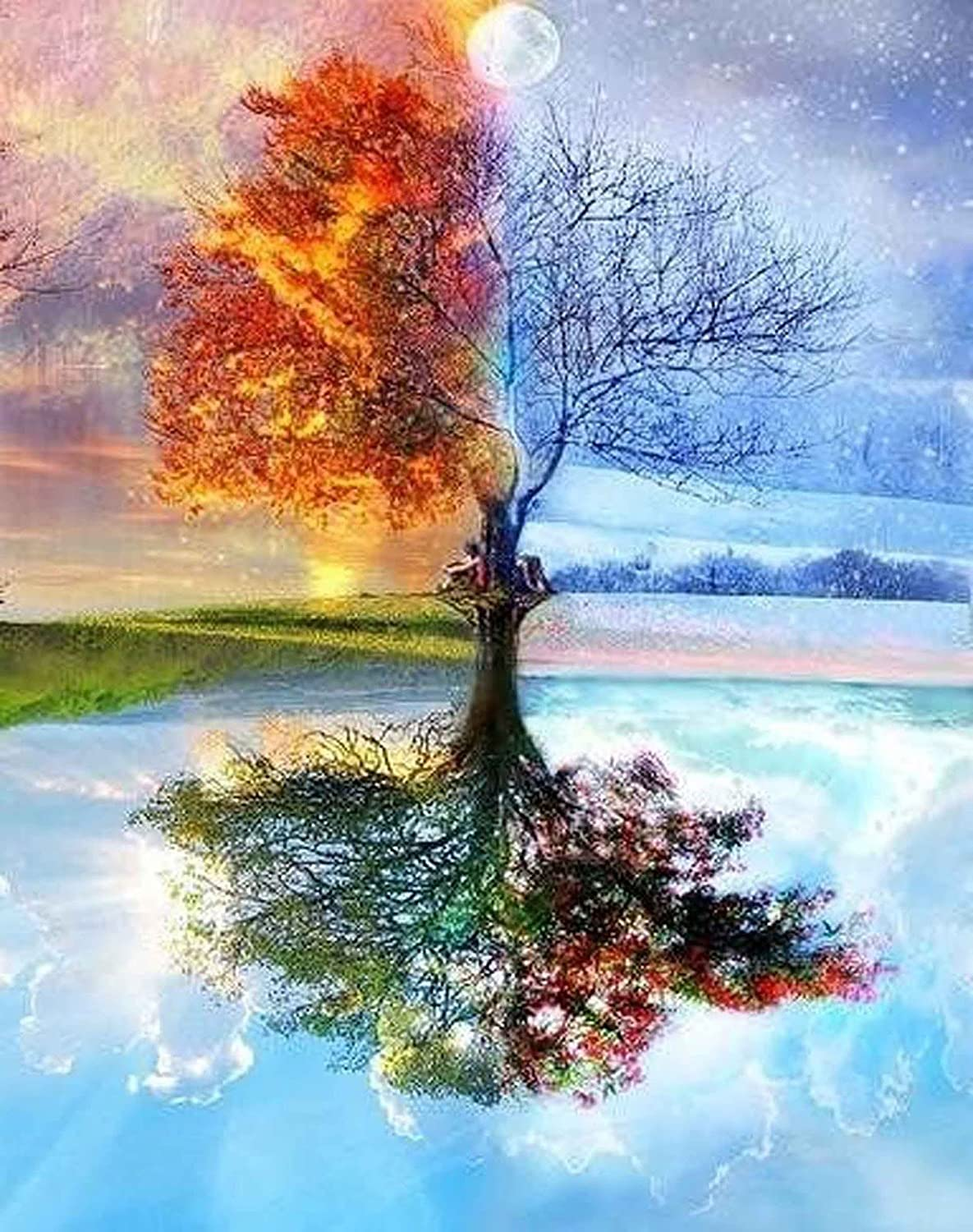 Amazon Com Diy Paint By Numbers For Adults Diy Oil Painting Kit For Kids Beginner Four Season Tree Of Life 16 X20