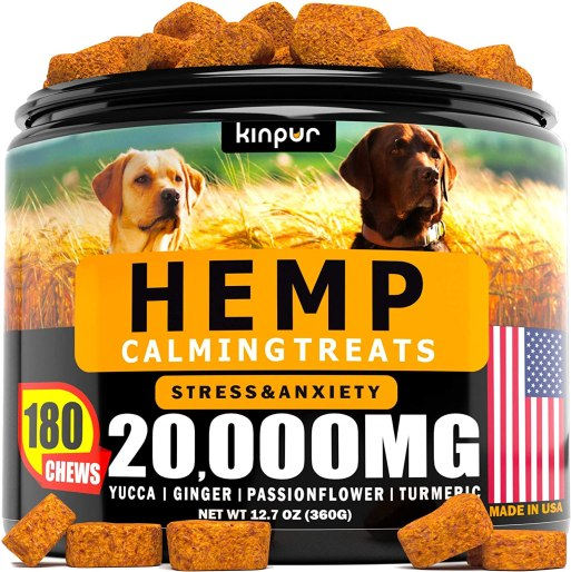 Best Hemp for dogs: Top 10 brands and buying guide