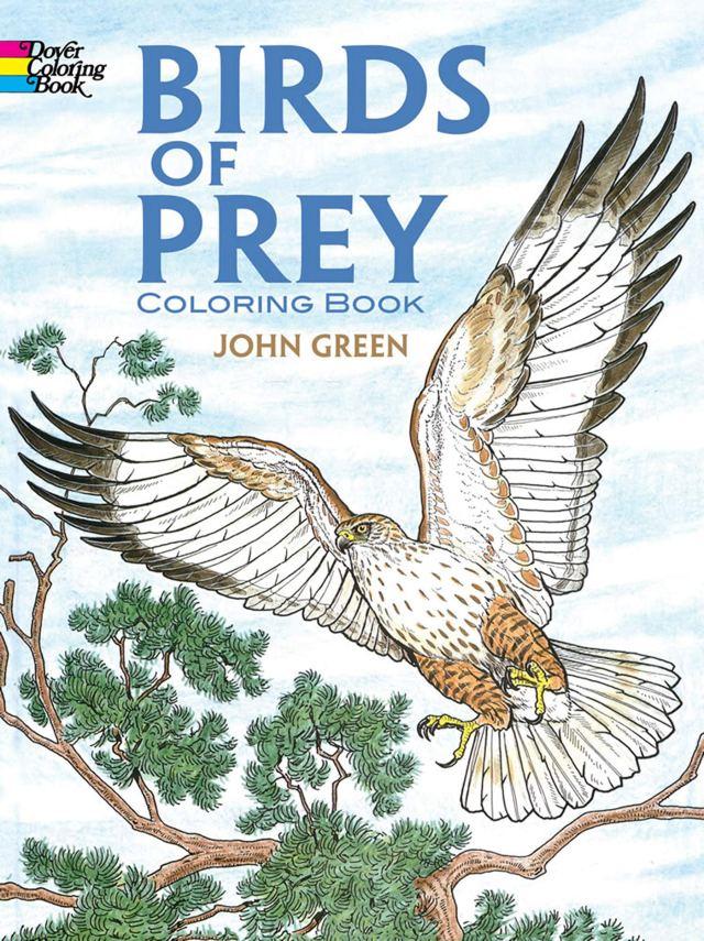 Birds of Prey Coloring Book: John Green: 15: Amazon.com