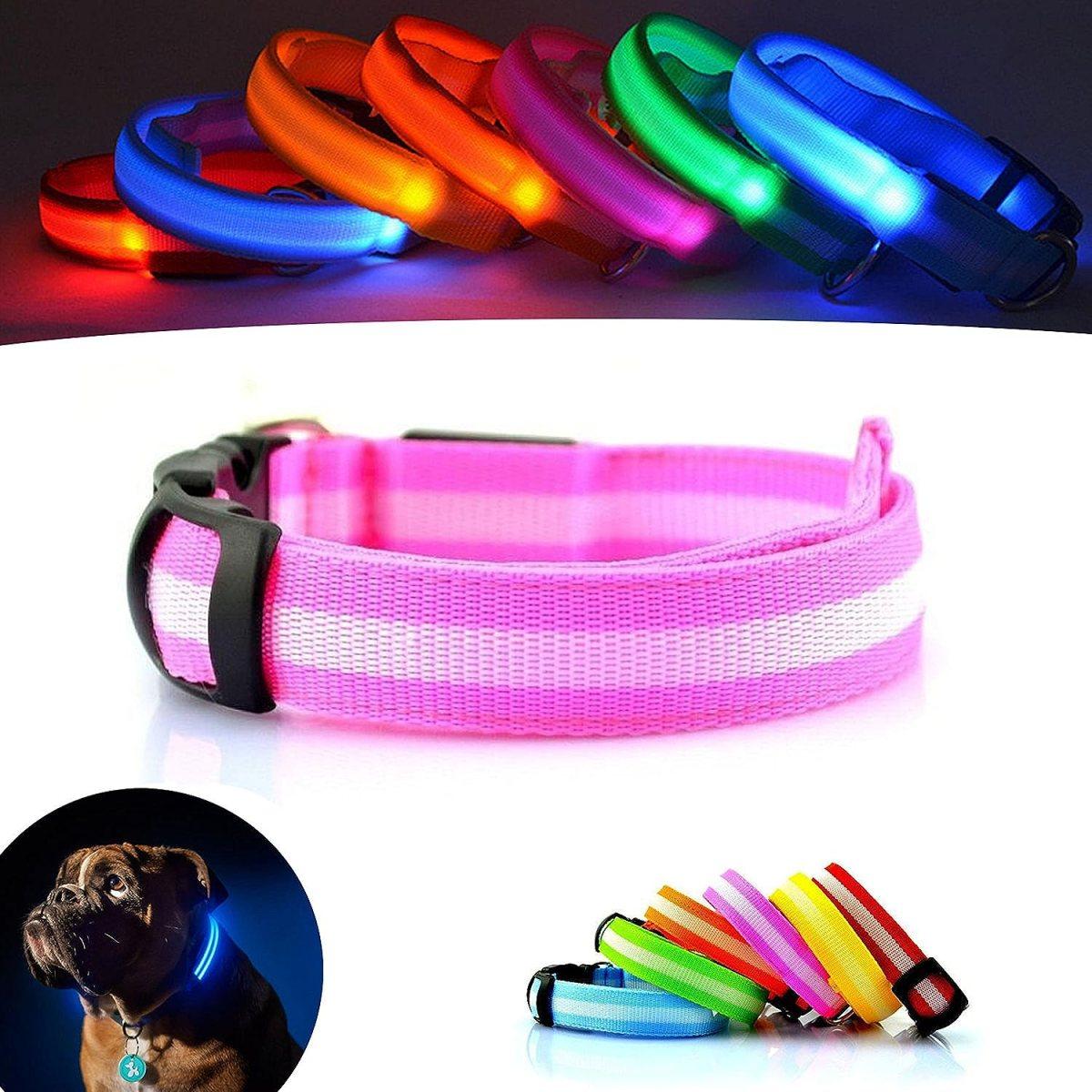 Mejor Perro visibilidad y seguridad – USB Batería LED perro seguridad Collar