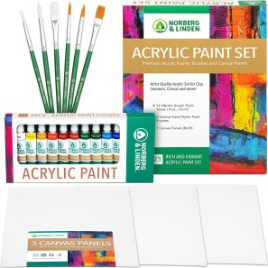 Acrylic Paint Set with Canvas