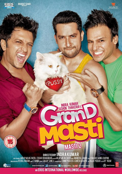 Download Grand Masti 2013 Hindi Movie  480p 720p