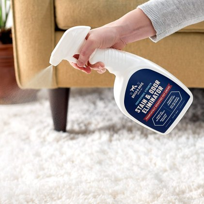 best Pet Odor & Stain Remover