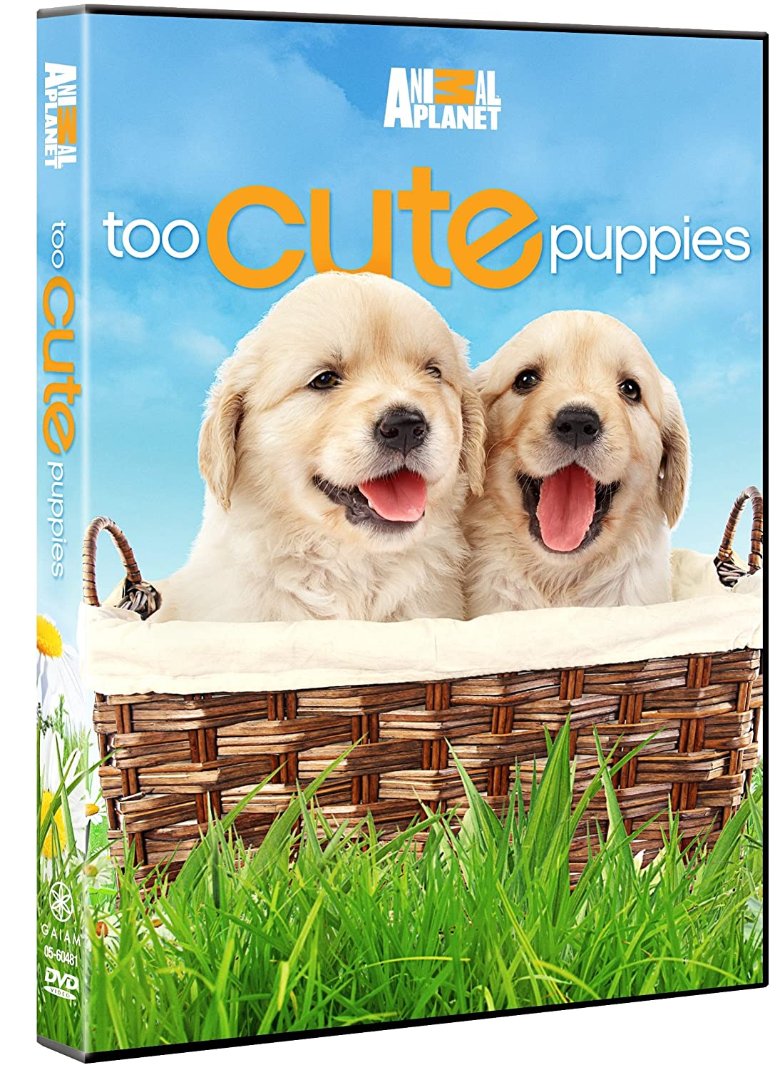 Amazon Com Too Cute Puppies Puppies Animal Planet Movies Tv