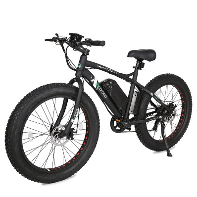 Ecotric Electric Bike Review